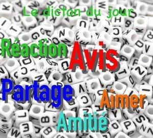 Network fr Actualité